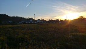 Härligt fält vid solnedgång Royaltyfri Bild