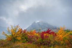 Härligt färghöstlandskap i berg arkivfoto