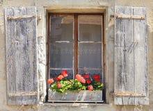 Härligt fönster med blommaasken royaltyfri bild