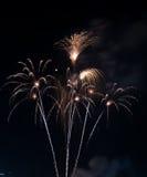 Härligt fyrverkeri på himlen på natten Arkivbilder