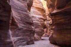 Härligt geologiskt bildande i öknen, färgrik sandstencan royaltyfri bild