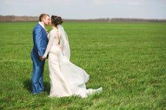 Härligt gift par som kysser på grönt fält royaltyfri bild