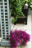 Härligt glöm den vita dekorativa tabellen med blommabusket och b Royaltyfri Fotografi