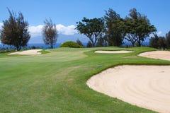 härligt golfhawaiibohål Fotografering för Bildbyråer