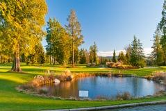 härligt golfställe Royaltyfri Fotografi