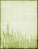 härligt gräs för bakgrund Arkivfoton