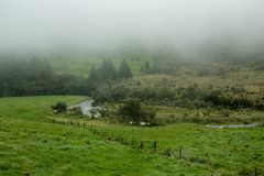 Härligt grönt fält med dimma över den i bygden arkivbild