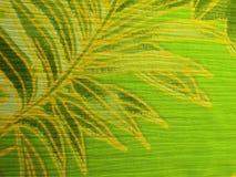 Härligt grönt tyg med sidor royaltyfri fotografi