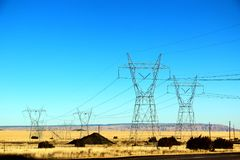 Härligt gult ogräsfältlandskap med det elektriska tornet i Nevada, sänder 66 i USA Arkivbild