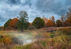 Härligt höstflodlandskap med färgrika träd och dimma arkivfoton