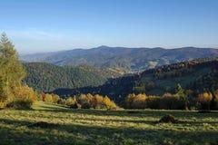 Härligt höstlandskap av Gorce berg, Polen Arkivfoto