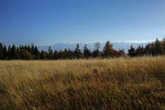 Härligt höstlandskap av Gorce och Tatra berg Royaltyfri Fotografi