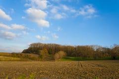Härligt höstlandskap i Flanders Arkivfoton