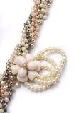 härligt halsband Royaltyfria Bilder