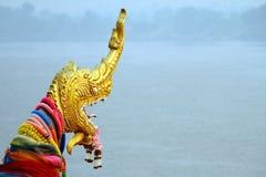 Härligt huvud av den thailändska draken Royaltyfria Foton
