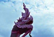 Härligt huvud av Nagas Royaltyfria Bilder