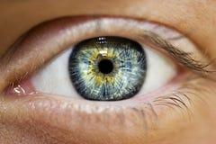 Härligt insiktsfullt öga för ` s för blickblåttkvinna royaltyfria foton
