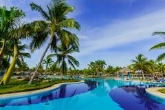 härligt invitera av den stilfulla simbassängen i tropisk trädgård på solig ursnygg dag royaltyfri bild