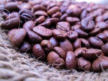 härligt Kaffe Bönor textur medf8ort espresso royaltyfri fotografi