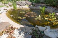 härligt klassiskt fiskträdgårddamm arkivbilder