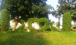 Härligt konstverk gjorde av gräs i grönt fält arkivbild
