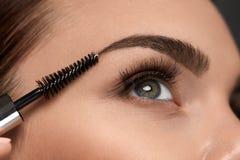Härligt kvinnaöga med långa ögonfrans och ögonbryn makeup Royaltyfria Foton