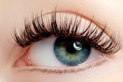 Härligt kvinnligt öga med extrema långa ögonfrans, svart eyelinermakeup Perfekt smink, långa snärtar Closeupmodeögon Royaltyfria Bilder