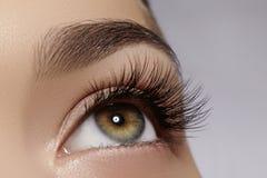 Härligt kvinnligt öga med extrema långa ögonfrans, svart eyelinermakeup Perfekt smink, långa snärtar Closeupmodeögon Fotografering för Bildbyråer