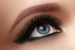 Härligt kvinnligt öga med extrema långa ögonfrans, svart eyelinermakeup Perfekt smink, långa snärtar Closeupmodeögon royaltyfri bild