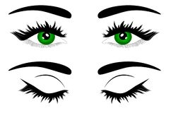 Härligt kvinnligt grönt öga för rengöringsdukvektorillustration royaltyfri illustrationer