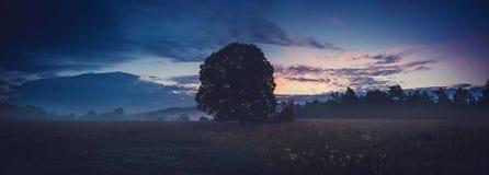 Härligt landskap Royaltyfria Foton