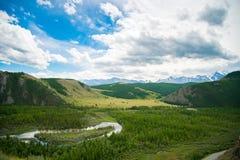 Härligt landskap av berg och skogen Arkivfoto