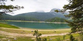 Härligt landskap av bergen och sjön Arkivfoton