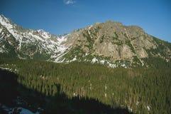 Härligt landskap av de höga bergen Fotografering för Bildbyråer