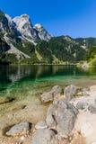Härligt landskap av den alpina sjön med kristallklart grönt vatten och berg i bakgrund, Gosausee, Österrike fotografering för bildbyråer