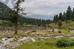 Härligt landskap av den felika ängen i sommar, Gilgit, Pakistan Fotografering för Bildbyråer