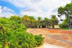 Härligt landskap av den fuktiga tropiska djungeln Royaltyfri Bild