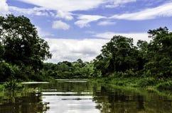 Härligt landskap av den Nilwala floden i Sri Lanka Fotografering för Bildbyråer