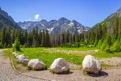 Härligt landskap av den Wlosienica ängen i det Tatra berget Fotografering för Bildbyråer