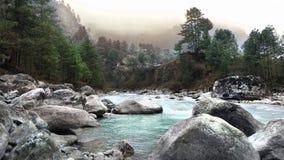 Härligt landskap av floden från skog i Nepal Royaltyfri Foto