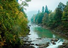 Härligt landskap av floden med vattenfallet i höstskog Royaltyfria Foton