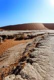 Härligt landskap av gömda Vlei i den Namib öknen Royaltyfri Fotografi