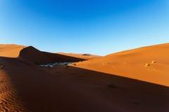 Härligt landskap av gömda Vlei i den Namib öknen Royaltyfri Bild