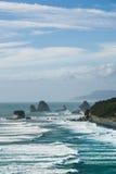 Härligt landskap av havet av Nya Zeeland Arkivbild