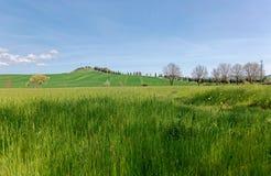 Härligt landskap av idyllisk Tuscany bygd i vår, med en slingrig landsväg som fodras med cypressträd Fotografering för Bildbyråer