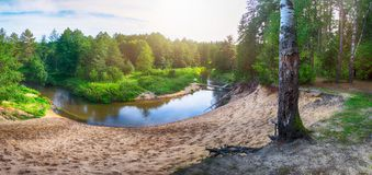 Härligt landskap av skogfloden med reflexioner av moln och träd Arkivfoto
