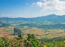 Härligt landskap av toppiga bergskedjan och dalen i Thailand Royaltyfri Bild