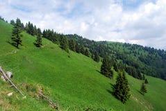 Härligt landskap av Velka Fatra Mts Arkivfoton
