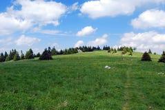 Härligt landskap av Velka Fatra Mts Royaltyfri Foto