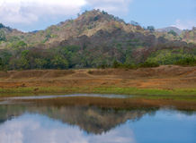 Härligt landskap berg och floden i Indien Arkivfoton
